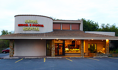 Animal Medical and Surgical Hospital.jpg